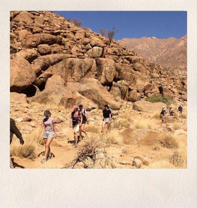 Asdia Namibia 1