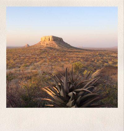 Asdia Namibia 6