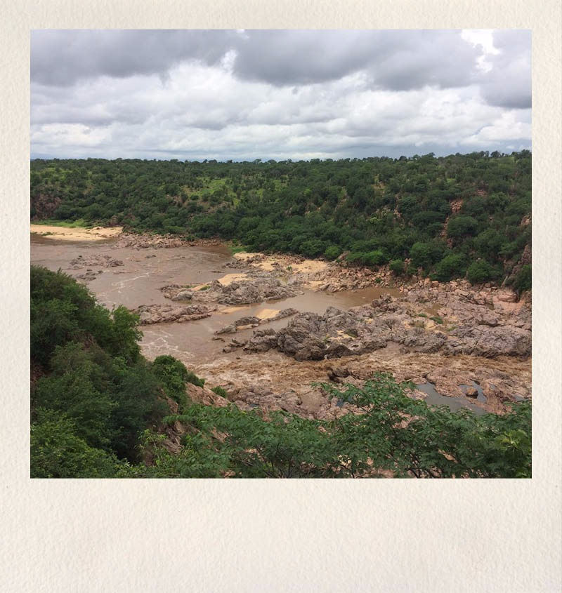 zimbabwe safari - asdia ecoventures