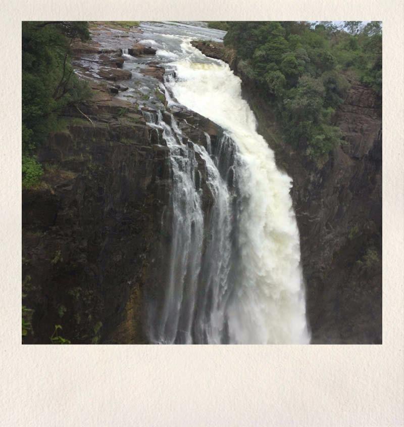 zimbabwe safari - asdia ecoventures 6
